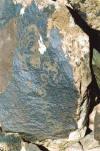 snakes rock-art